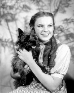 Judy Garland as Dorothy with Toto, Wizard of Oz (3)