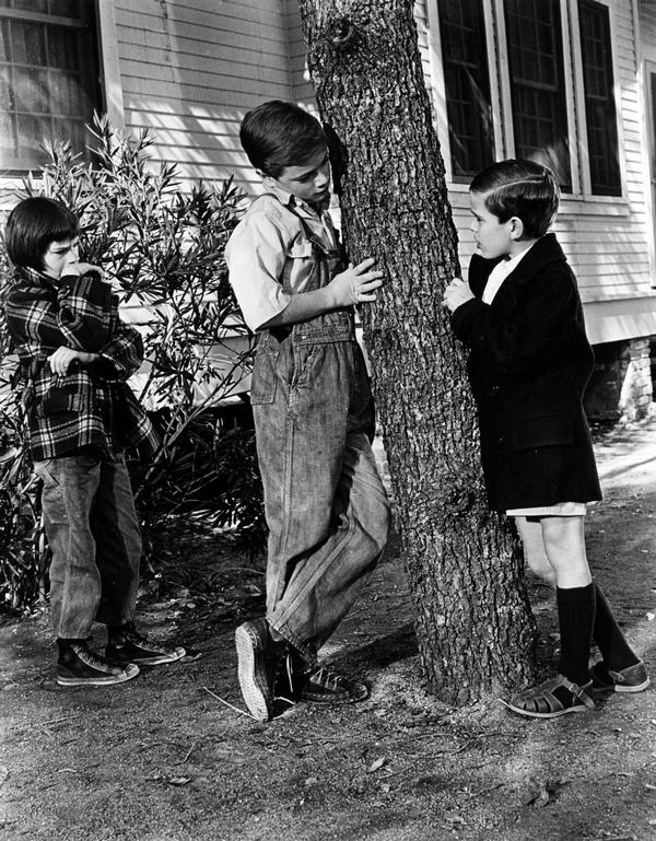 the maturity of scout and jem in to kill a mockingbird by harper lee To kill a mockingbird advanced placement in english literature and composition teaching unit study guide teachers scout, jem, and dill spend most to kill a mockingbird harper lee chapter 1 the story is narrated by jean louise finch.